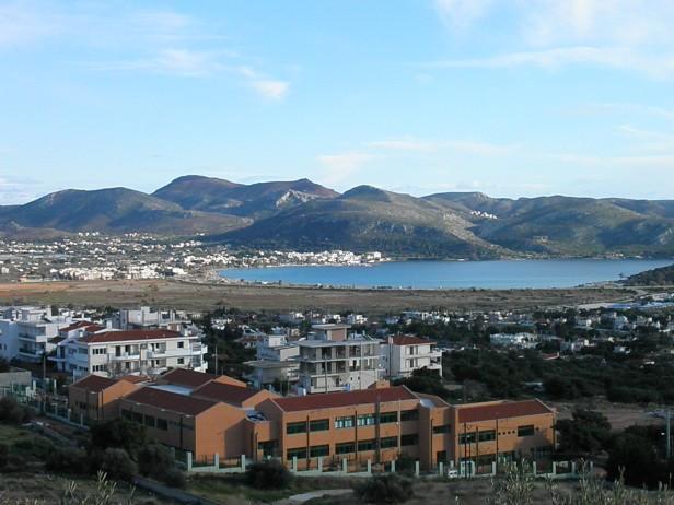 Στο βάθος η κωμόπολη τής Π. Φώκαιας και οι αλυκές Αναβύσσου, όπως φαίνονται από το δασώδη λόφο τής Σαρωνίδας