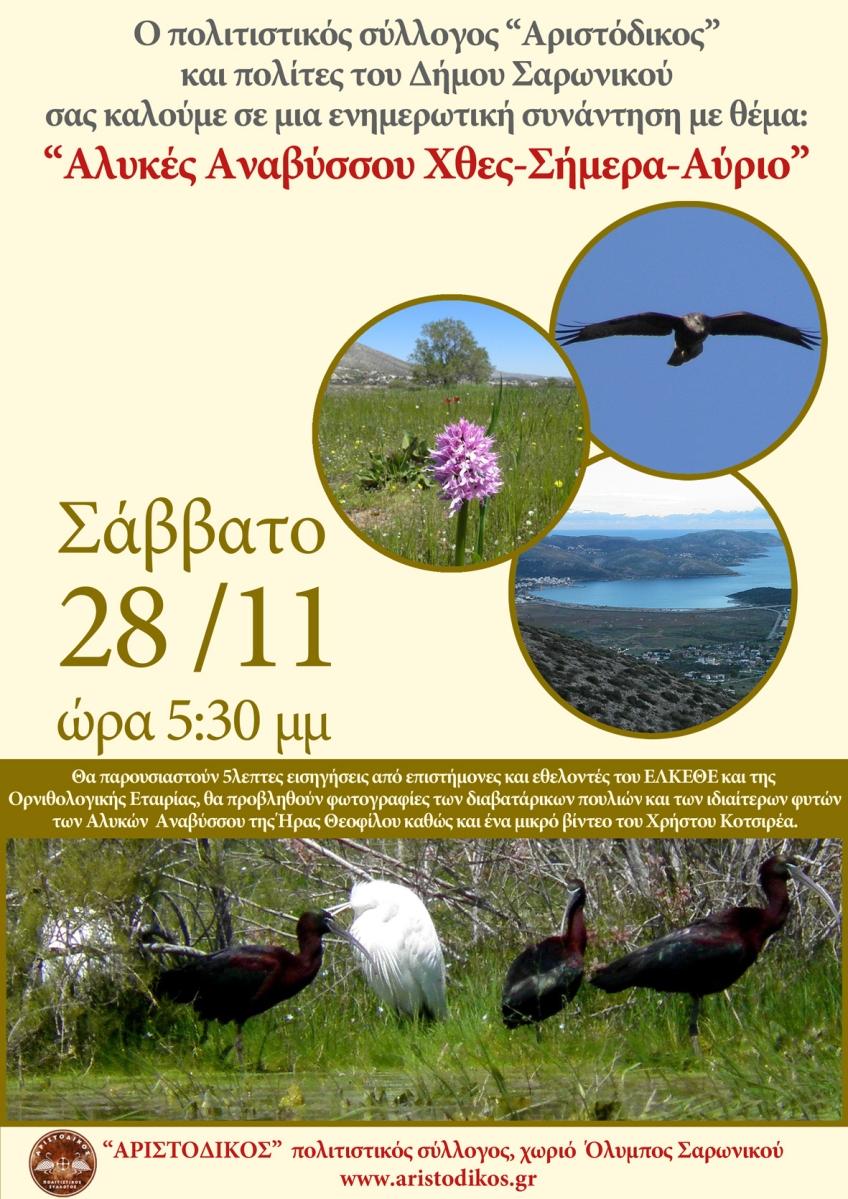Ενημερωτική εκδήλωση για τον υγρότοπο Αλυκών Αναβύσσου (Σάββατο, 28 Νοεμβρίου 2015 - ώρα 17:30)